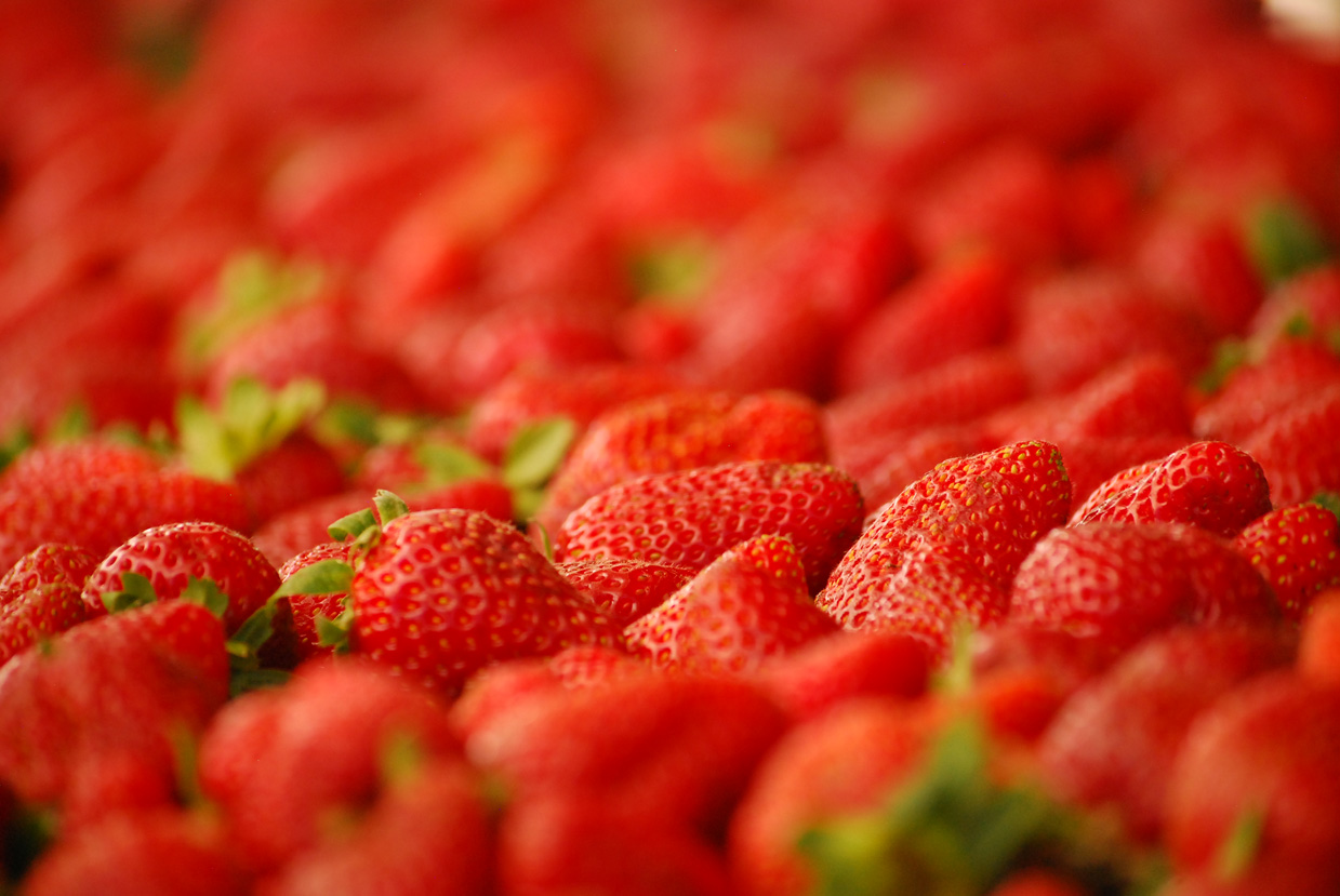 Foto Monatshygiene Strawberries